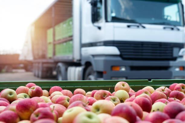 granja inversión frutas