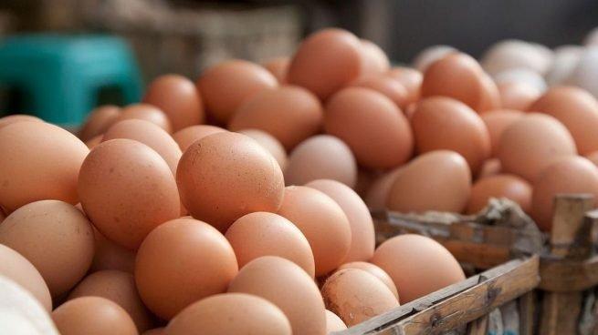 granja inversión huevos