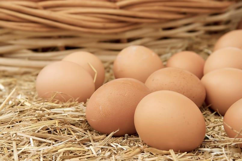 granja inversión huevos canasta