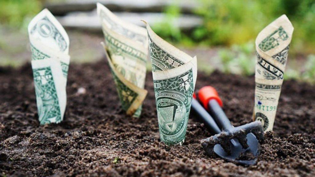 inversión inicial siembra