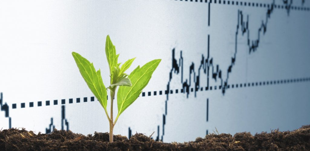 inversión socialmente responsable siembra