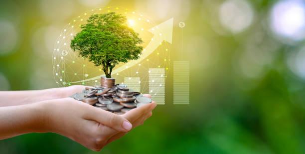 productos de inversión ahorro dinero