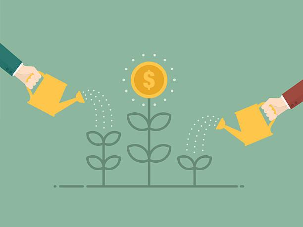 productos de inversión siembra
