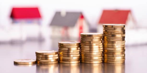 proyecto inversión monedas casas
